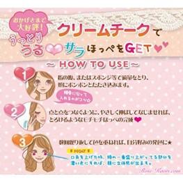 Canmake instruction d'utilisation en version japonaise